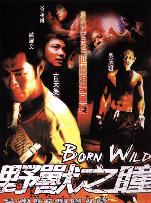 Born Wild Movie Poster, 2001, Actor: Louis Koo, Hong Kong Film