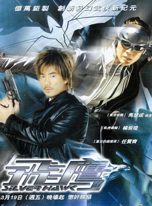 Silver Hawk Movie Poster, 2004, Actress: Michelle Yeoh, Hong Kong Film