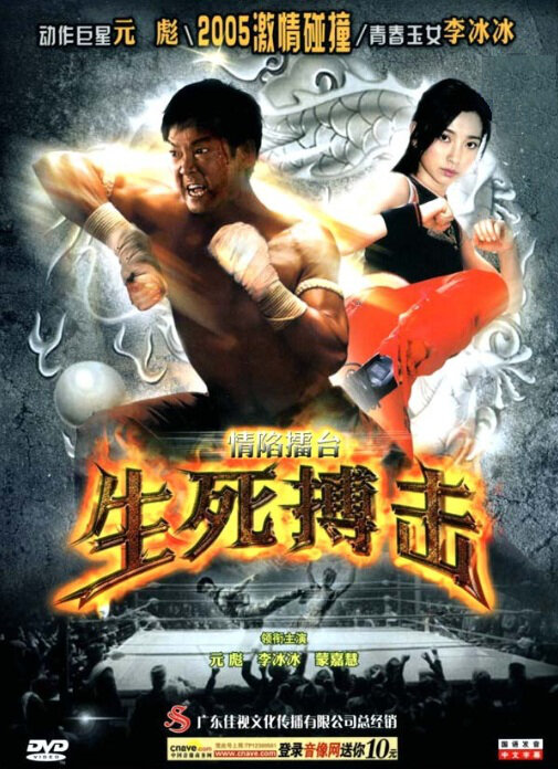 Fight for Love Movie Poster, 2005, Actress: Li Bingbing, Hong Kong Film