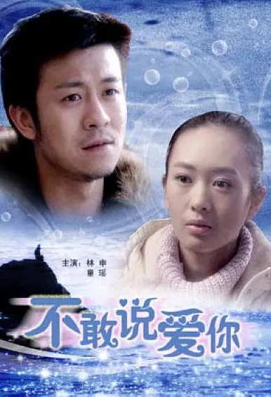 Not Dare to Say I Love You Movie Poster, 不敢说爱你 2008 Chinese film