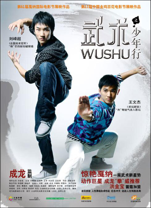 Wushu Movie Poster, 2008
