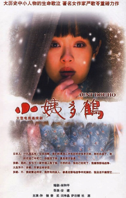 Auntie Duohe Poster, 小姨多鹤 2009 Chinese TV drama series