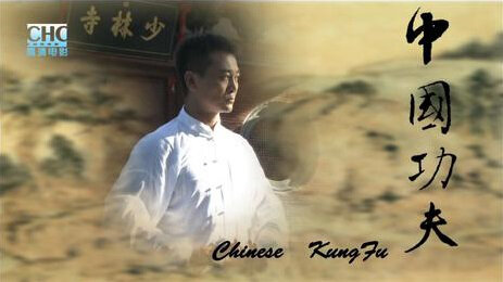 Chinese Kung Fu Poster, 2010