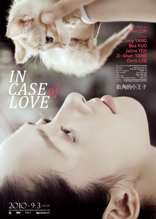 In Case of Love Movie Poster, 2010, image