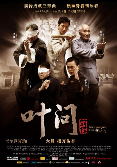Ip Man: The Legend is Born (2008)