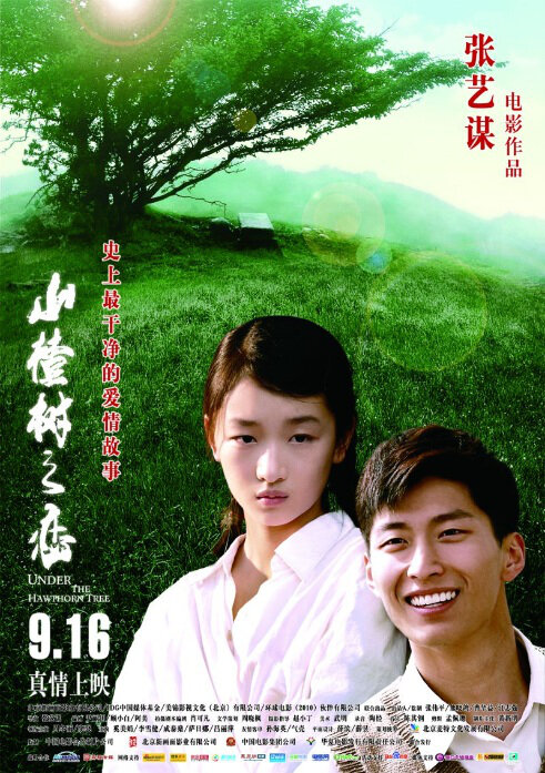 Under the Hawthorn Tree Movie Poster, 2010, Zhou Dongyu