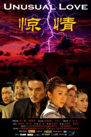 Unusual Love  Movie Poster, 2010, Chinese Film