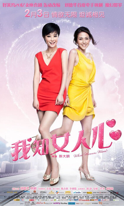 What Women Want Movie Poster, 2011