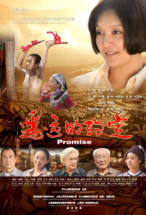 Promise Movie Poster, 2012
