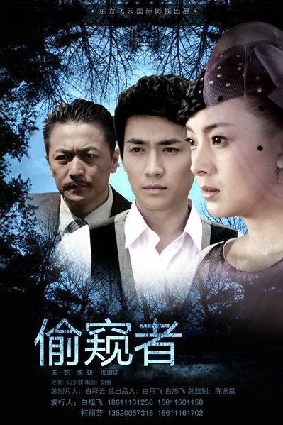 Secret Spy Movie Poster, 2012 Chinese film