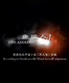 The Assassin Movie Poster, 2012