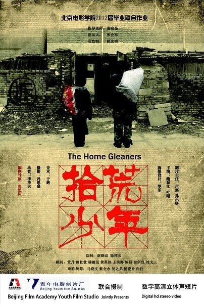 The Home Gleaners Movie Poster, 2012