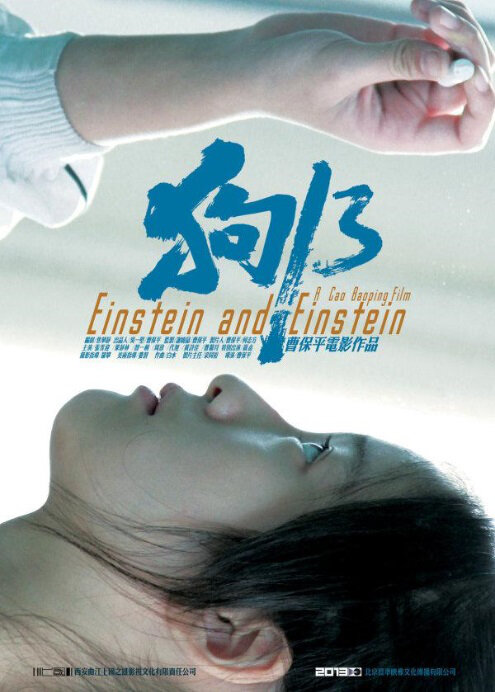 Einstein and Einstein Movie Poster, 2013 best chinese film