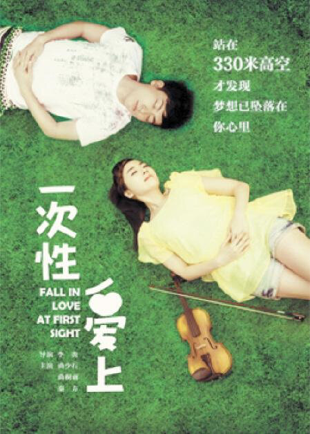 Fall in Love at First Sight Movie Poster, 2013