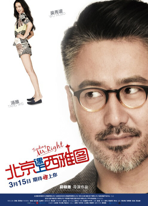 Finding Mr. Right Movie Poster, 2013, Wu Xiubo