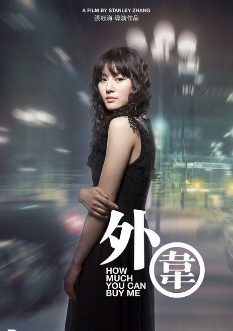How Much You Can Buy Me Movie Poster, 2013