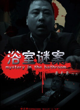 Mystery in the Bathroom Movie Poster, 2013