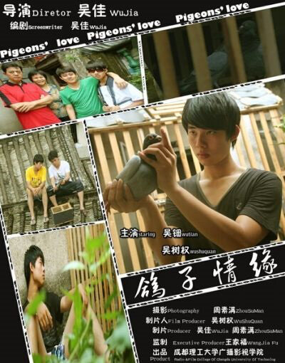 Pigeons' Love Movie Poster, 2013