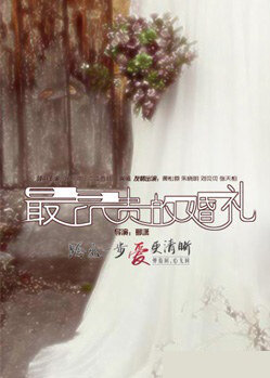 The Most Expensive Wedding Movie Poster, 2013 Chinese film