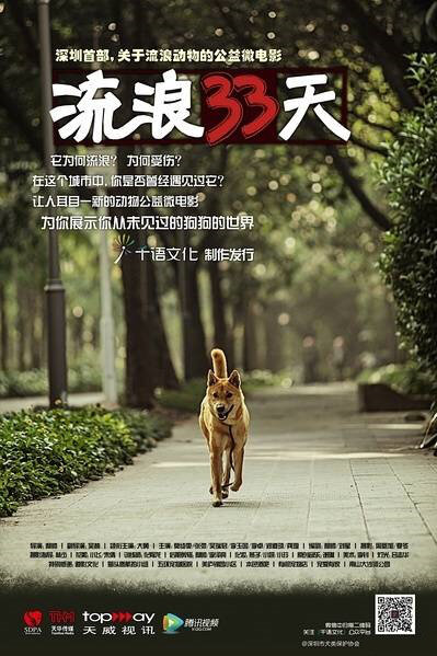 Wandering 33 Days Movie Poster, 2013 Chinese film