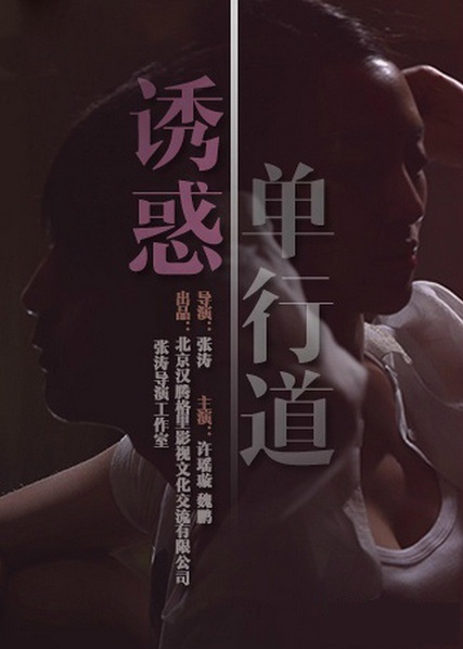 Allure One Way Movie Poster, 2014 Chinese film