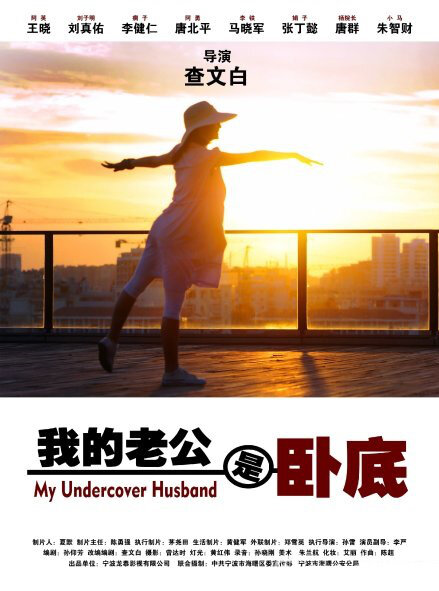 My Undercover Husband Movie Poster, 2014 chinese movie