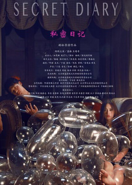 Secret Diary Movie Poster, 2014