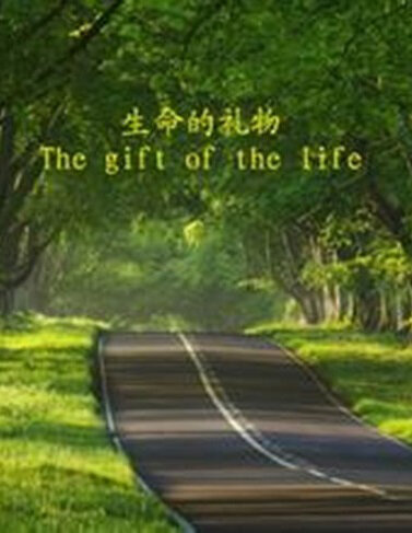 The Gift of the Life Movie Poster, 2014 Chinese film