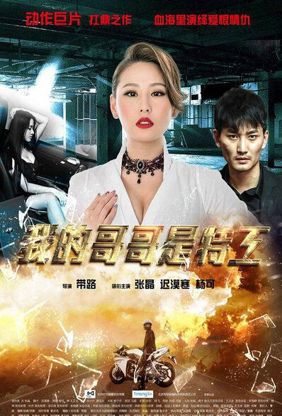 My Brother Is Spy Movie Poster, 2015 Chinese film