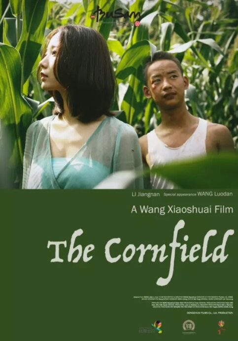 The Cornfield Movie Poster, 2015 Chinese film