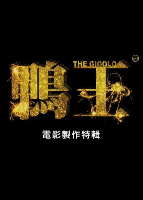 The Gigolo Movie Poster, 2015 chinese movie