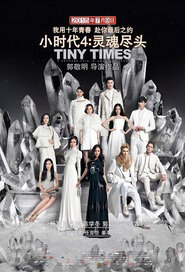 Tiny Times 4 Movie Poster, 2015