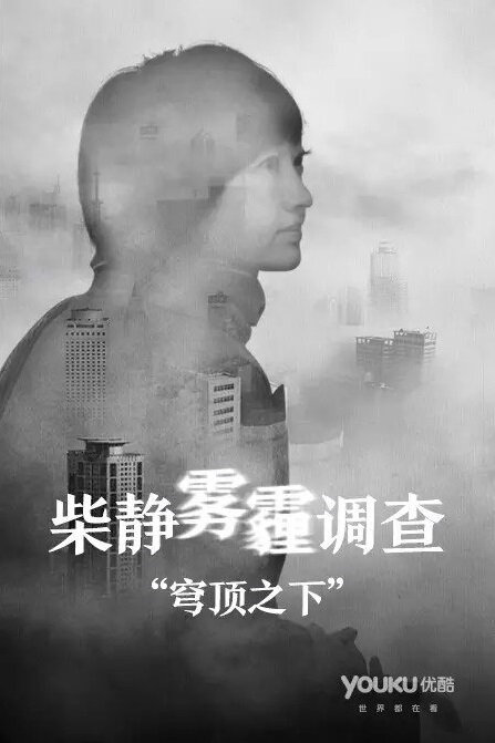 Under the Dome Movie Poster, 2015 Chinese film