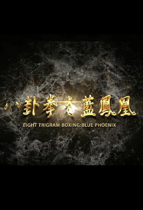 Eight Trigram Boxing: Blue Phoenix Movie Poster, 2016 Chinese film