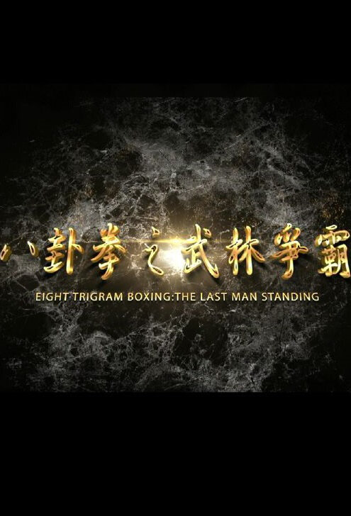 Eight Trigram Boxing: The Last Man Standing Movie Poster, 2016 Chinese film