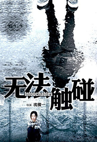 Intouchables Movie Poster, 2016 Chinese film