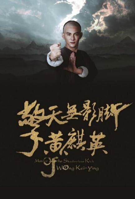 Master of the Shadowless Kick Wong Kei-Ying Movie Poster, 2016 Chinese film