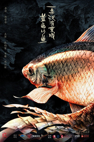 Not Only About a Fish Movie Poster, 2016 Chinese film