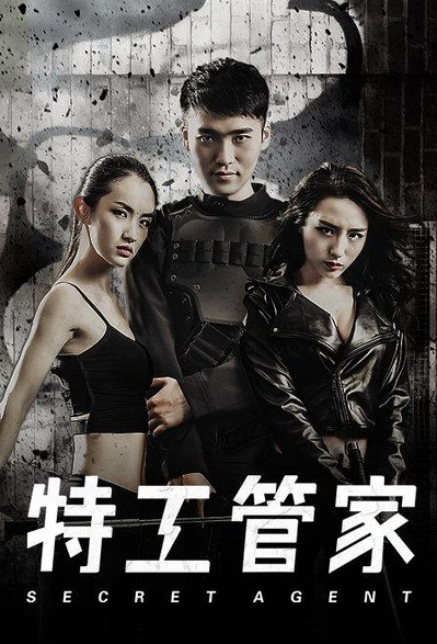 Secret Agent Movie Poster, 2016 Chinese film