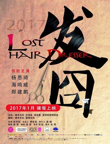 Lost Hair Dresser Movie Poster, 2017 Chinese film