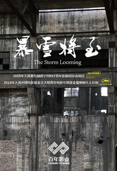 The Storm Looming Movie Poster, 2017 Chinese film