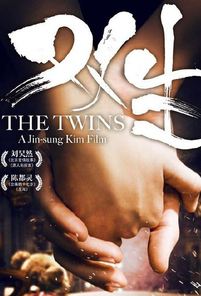 The Twins Movie Poster, 2017 Chinese film