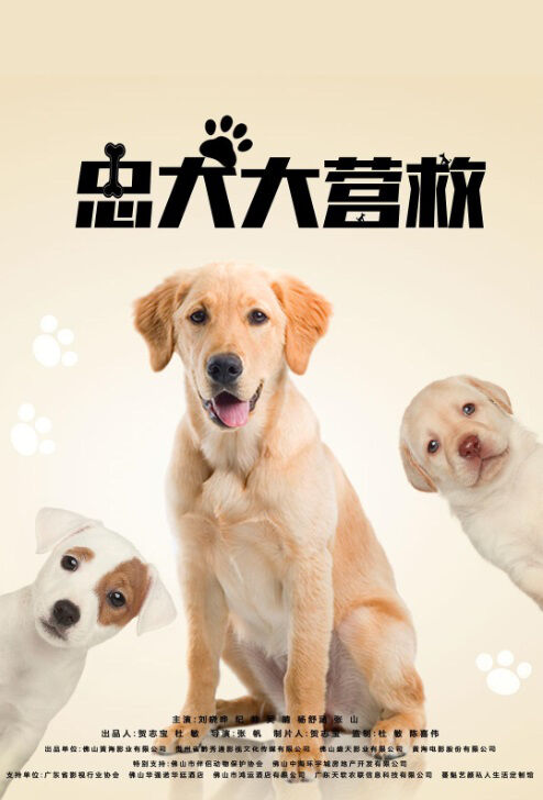 Dog Rescue Movie Poster,  忠犬大营救 2018 Chinese film