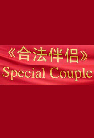 Special Couple Movie Poster,  合法伴侣 2018 Chinese film