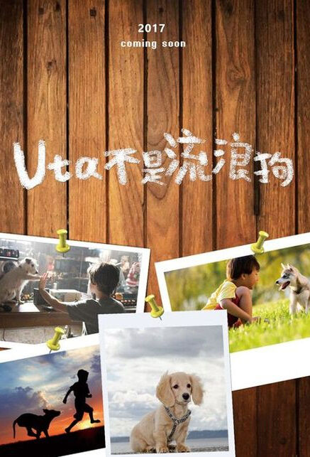 Uta Is Not a Stray Dog Movie Poster, Uta不是流浪狗 2018 Chinese film
