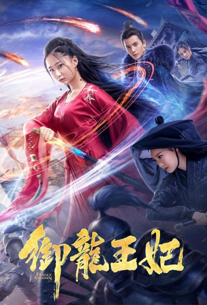Female Assassin Movie Poster, 御龙王妃 2019 Chinese film