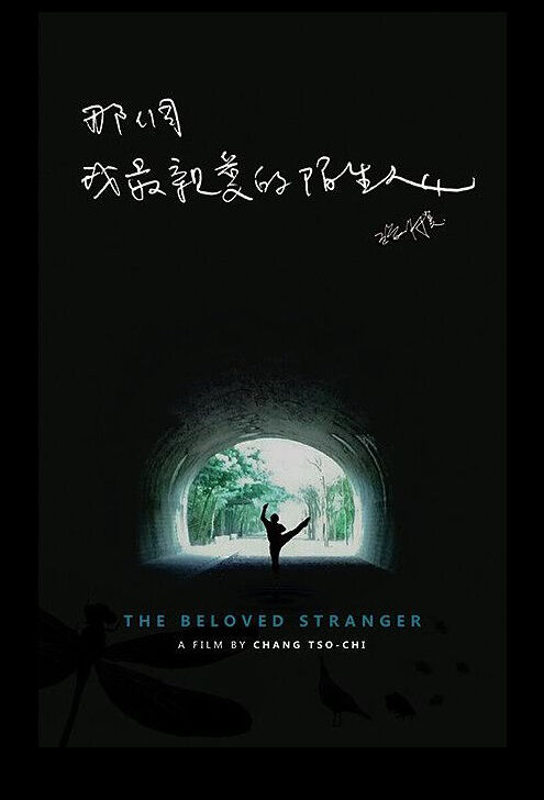 The Beloved Stranger Movie Poster, 那個我最親愛的陌生人 2019 Taiwan film