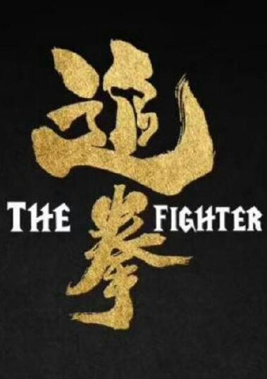 The Fighter Movie Poster,  追拳 2019 Chinese film