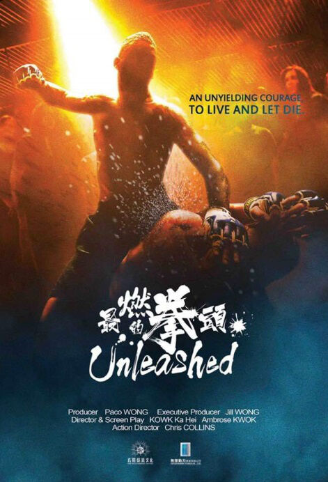 Unleashed Movie Poster, 最燃的拳頭 2019 Chinese film