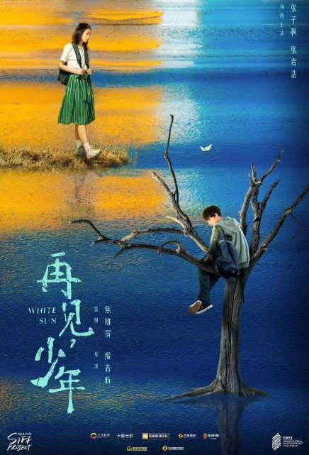 White Sun Movie Poster, 再见,少年 2019 Chinese film